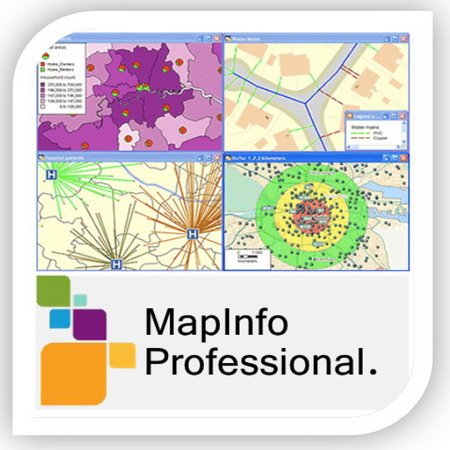 Pitney Bowes MapInfo Professional v12.5.2 Build 206 (RUS)