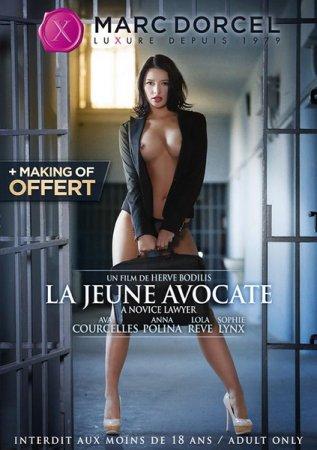 Обложка Начинающий Адвокат / A Novice Lawyer / La jeune Avocate (2014) DVDRip (с русским переводом)