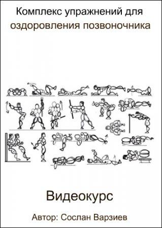 Обложка Комплекс упражнений для оздоровления позвоночника (2017) Видеокурс